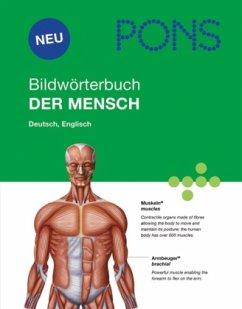 PONS Bildwörterbuch Der Mensch - Corbeil, Jean-Claude; Archambault, Ariane