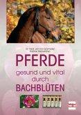 Pferde - gesund und vital durch Bachblüten