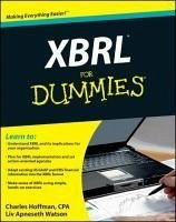 XBRL for Dummies