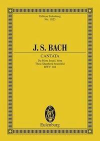 Kantate Nr. 104 (Am Sonntage Misericordias Domini)