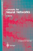 Concepts for Neural Networks