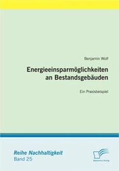 Energieeinsparmöglichkeiten an Bestandsgebäuden - Wolf, Benjamin