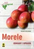 Morele Odmiany i uprawa