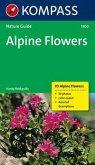Alpine Flowers (Alpenblumen)