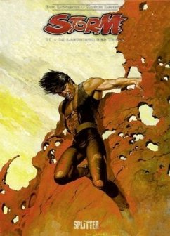 Im Labyrinth des Todes / Storm Bd.11 - Lawrence, Don; Lodewijk, Martin