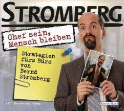Stromberg Hörbuch