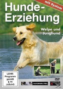 Hundeerziehung mit System: Welpe und Junghund - Diverse