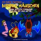 Warum schlafen Fledermäuse mit dem Kopf nach unten?, Audio-CD / Die kleine Schnecke, Monika Häuschen, Audio-CDs Nr.7