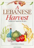 A Lebanese Harvest: The System of Geometric Design