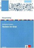 Klausurtraining Wolfgang Koeppen 'Tauben im Gras'