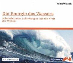 Die Energie des Wassers - Schneeblumen, Schneealgen und die Kraft der Wellen, 1 Audio-CD