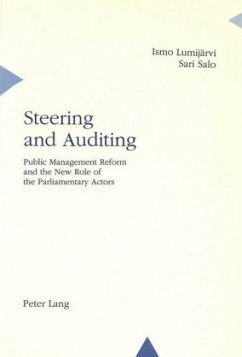 Steering and Auditing - Lumijärvi, Ismo; Salo, Sari