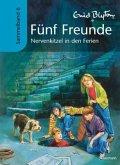 Nervenkitzel in den Ferien / Fünf Freunde Sammelbände Bd.6