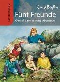 Gemeinsam in neue Abenteuer / Fünf Freunde Sammelbände Bd.2