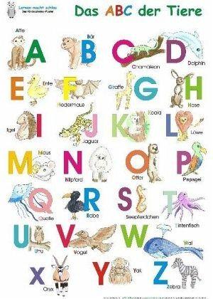 Das ABC der Tiere (Poster) - Momm-Zach, Helga