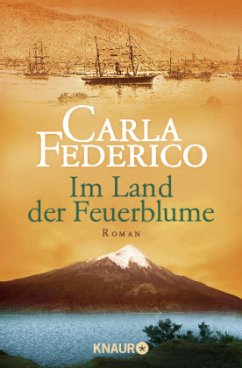Im Land der Feuerblume / Chile-Saga Bd.1 - Federico, Carla