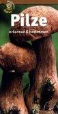 Pilze erkennen und bestimmen