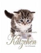 Kätzchen - Fine Art Photography