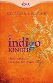 Die Indigo Kinder