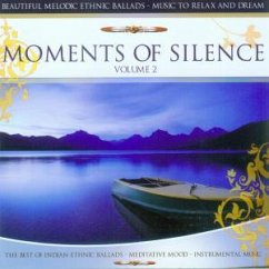 Moments Of Silence Vol.2