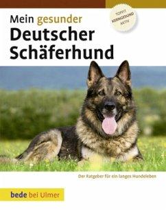 Mein gesunder Deutscher Schäferhund