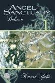 Angel Sanctuary Deluxe 01