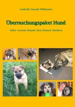 Überraschungspaket Hund - Staudt-Millmann, Isabella
