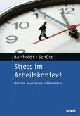 Stress im Arbeitskontext