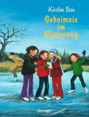 Geheimnis im Möwenweg / Möwenweg Bd.6