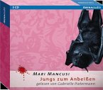 Jungs zum Anbeißen / Sunshine & Rayne Bd.1 (3 Audio-CDs)