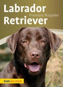 Labrador Retriever - Schmitt, Annette