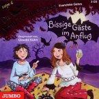 Bissige Gäste Im Anflug / Die Vampirschwestern Bd.6