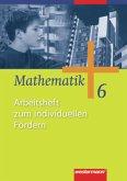 Mathematik 6. Arbeitsheft zum individuellen Fördern