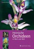 Heimische Orchideen in Wort und Bild