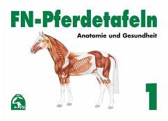 FN-Pferdetafeln. Mappe 1. Anatomie und Gesundheit