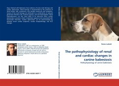 The pathophysiology of renal and cardiac changes in canine babesiosis