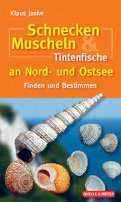 Schnecken, Muscheln & Tintenfische an Nord- und...