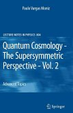 Quantum Cosmology - The Supersymmetric Perspective - Vol. 2