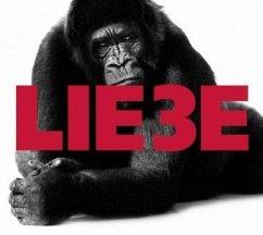 Lie3e, Audio-CD - Rether, Hagen