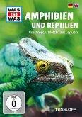 Was ist was: Amphibien und Reptilien - Grasfrosch, Molch und Leguan