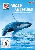 Was ist was: Wale und Delfine - Faszinierende Meeressäuger