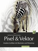 Pixel & Vektor