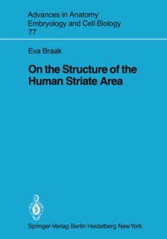 On the Structure of the Human Striate Area - Braak, E.