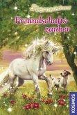 Freundschaftszauber / Sternenschweif Bd.25