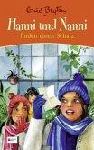 Hanni und Nanni finden einen Schatz / Hanni und Nanni Sonderband Bd.2