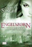 Engelszorn / Gilde der Jäger Bd.2