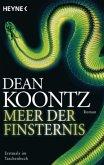 Meer der Finsternis / Odd Thomas Bd.4