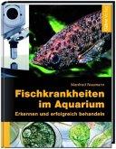 Fischkrankheiten im Aquarium