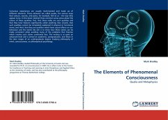 The Elements of Phenomenal Consciousness