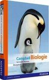 Campbell Biologie Gymnasiale Oberstufe, Übungsbuch
